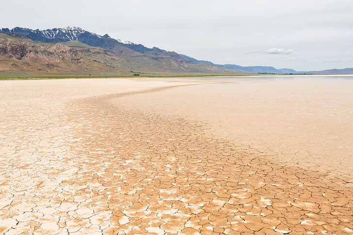 Alvord Desert Oregon – What You Need to Know Before You Go