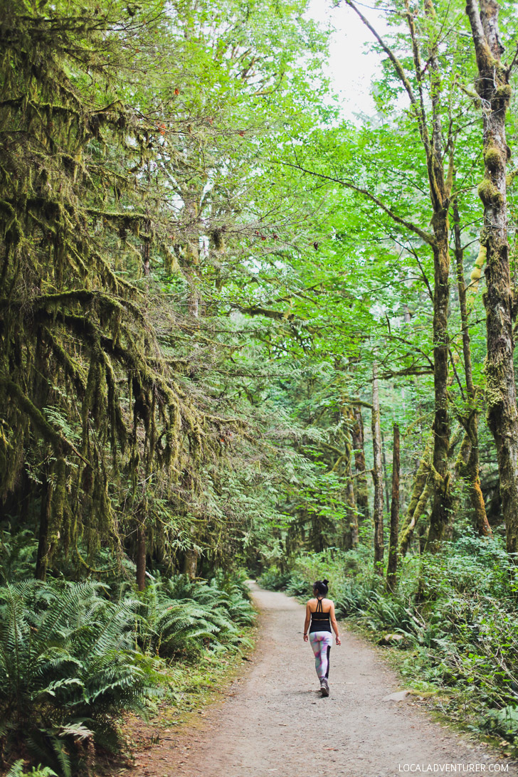 Skookumchuck Narrows Provincial Park + Best Things to Do on the Sunshine Coast BC // localadventurer.com