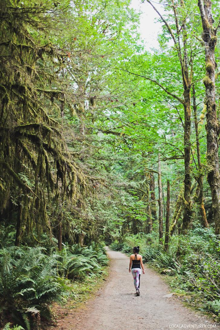 Skookumchuck Narrows Provincial Park + Best Things to Do on the Sunshine Coast BC // localadventurer.com