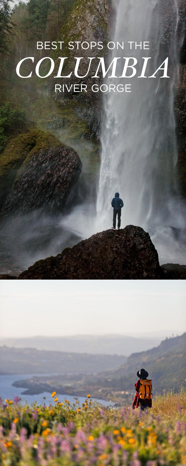 Best Hikes in the Columbia River Gorge // localadventurer.com