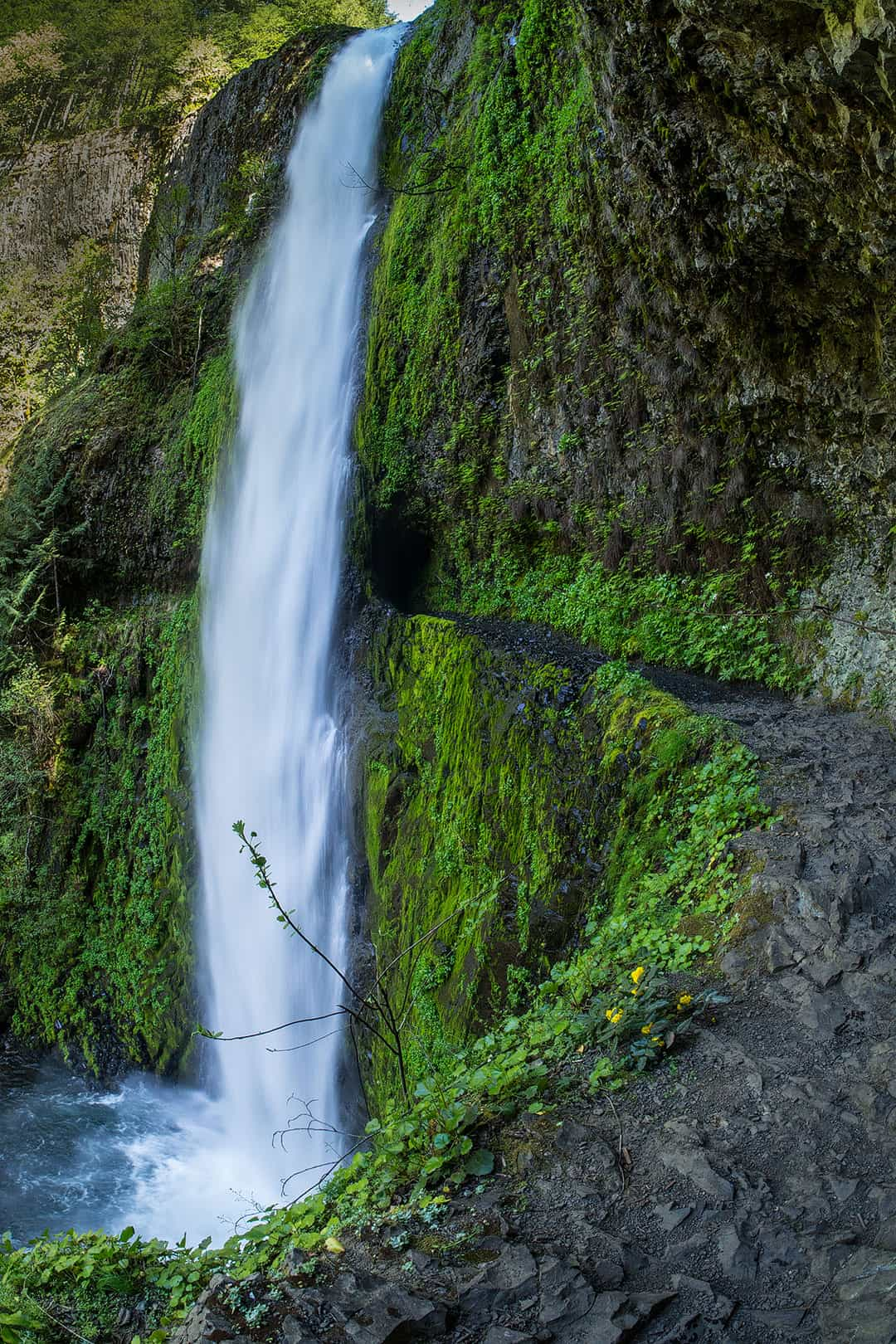 eagle creek trail oregon