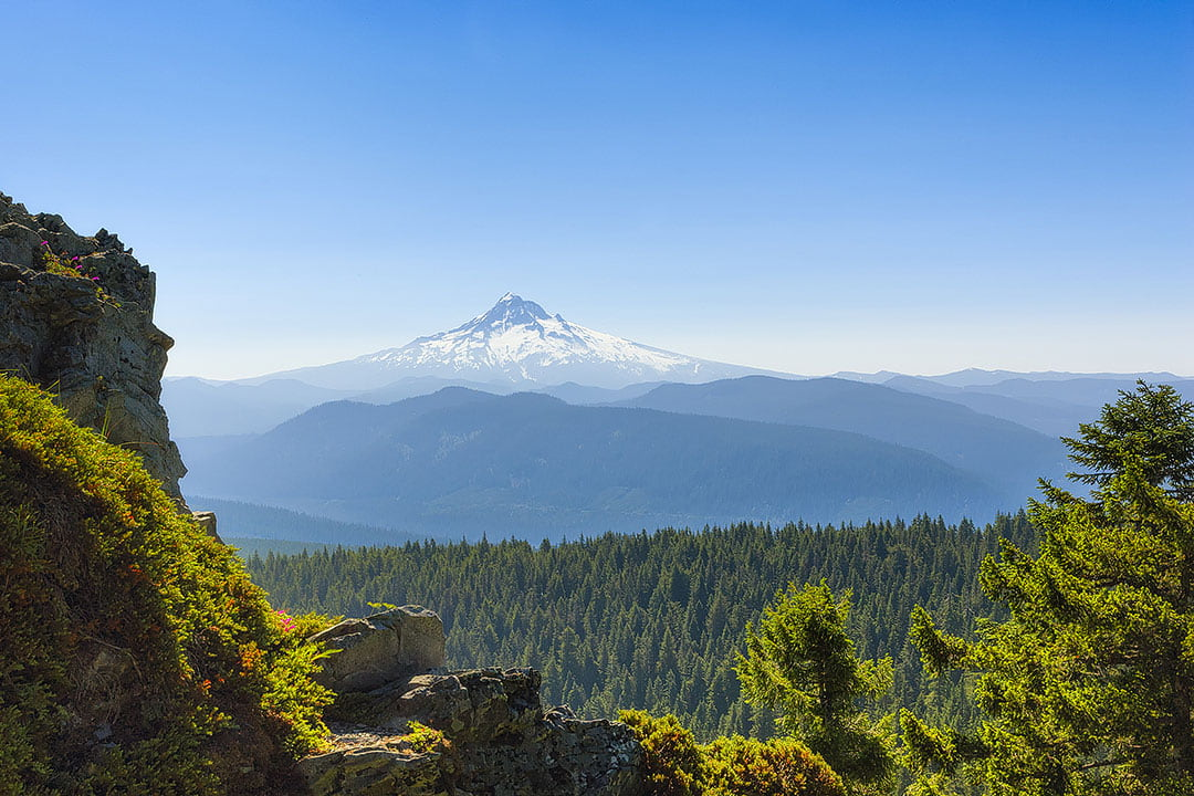 larch mountain trail oregon