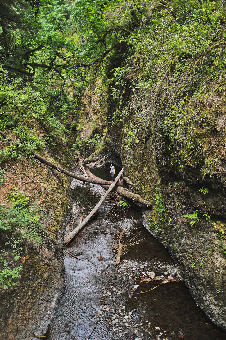 Oneonta Gorge Oregon from the top of Lower Oneonta Falls - Hiking in the Columbia River Gorge // localadventurer.com