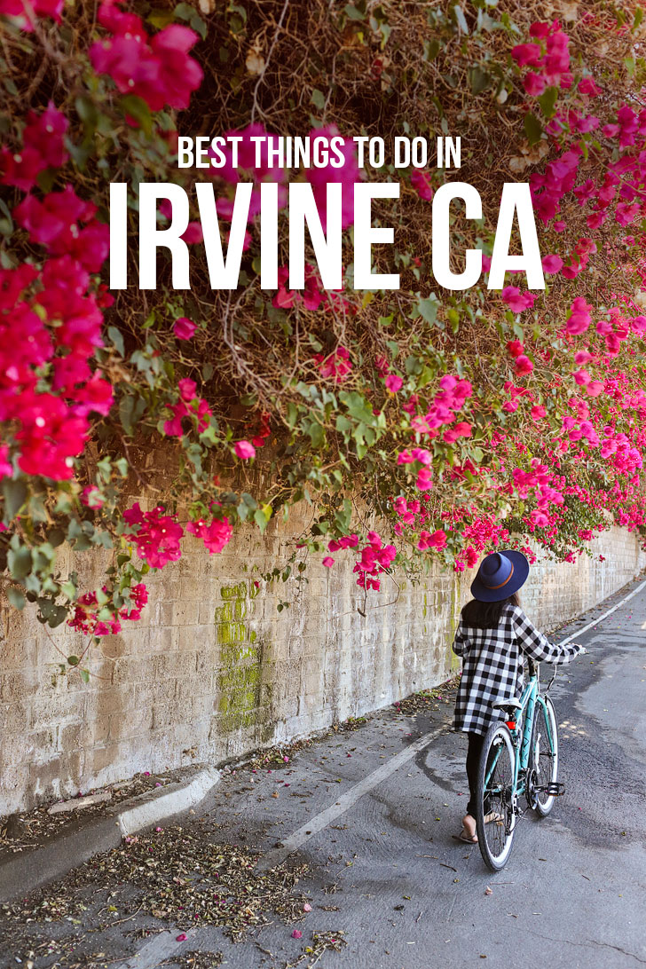 Things to do in irvine today