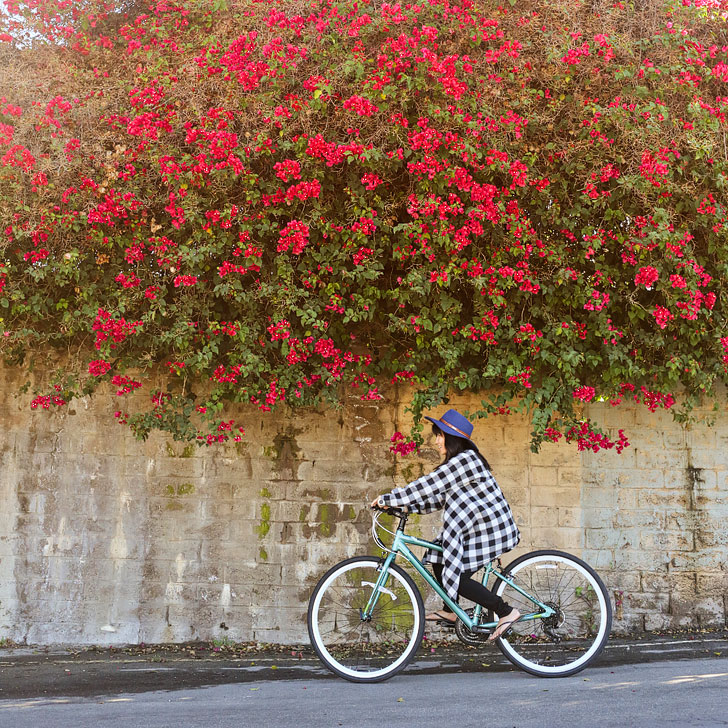 Biking in Irvine (there are over 54 mi of trails here) + 13 Unique and Fun Things to Do in Irvine California + Essential Tips for Your Visit // localadventurer.com