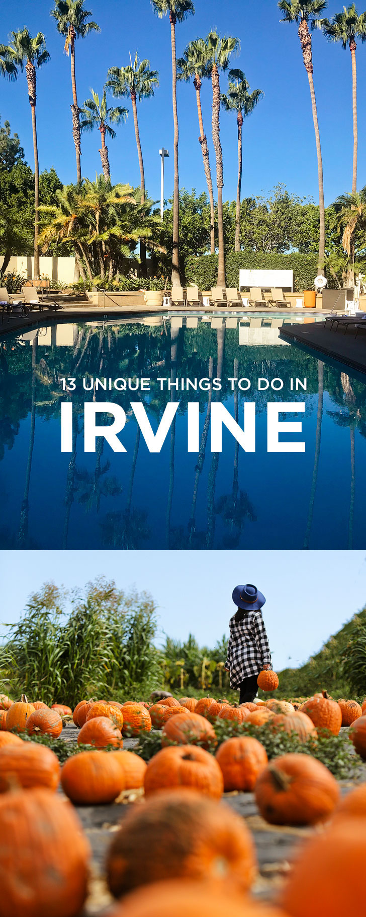 13 Unique and Fun Things to Do in Irvine California + Essential Tips for Your Visit // localadventurer.com