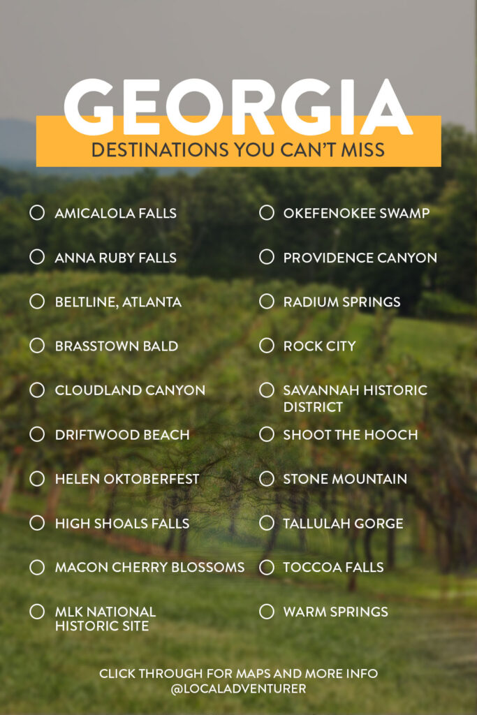 20 Best Things to Do in Georgia State