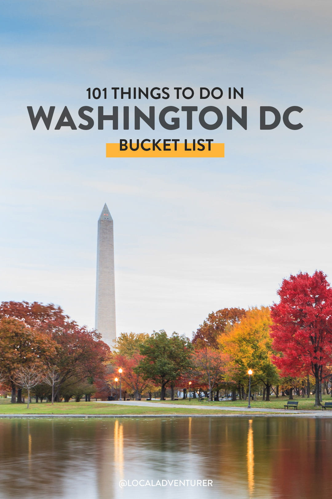 What to See in DC