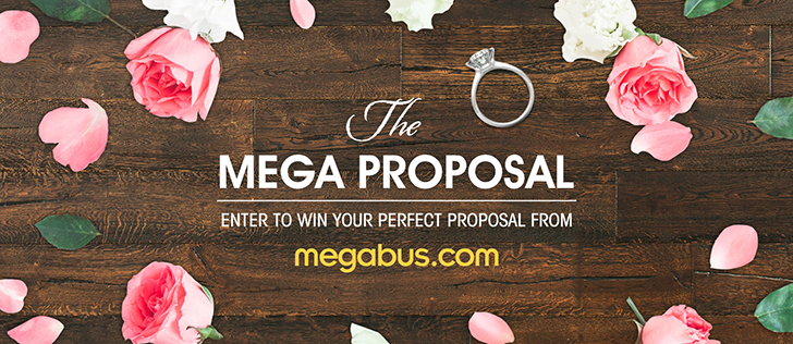 An Epic Proposal Gone Wrong Mega Proposal Contest Local