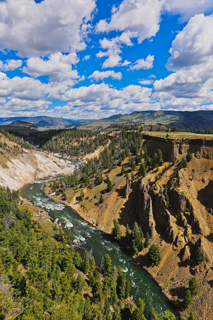 Tower Fall + The Ultimate Guide to Yellowstone National Park - Best Things to Do in Canyon Village, Fishing Bridge, Madison, Mammoth Hot Springs, Norris, Old Faithful, and Tower Roosevelt Areas // Local Adventurer