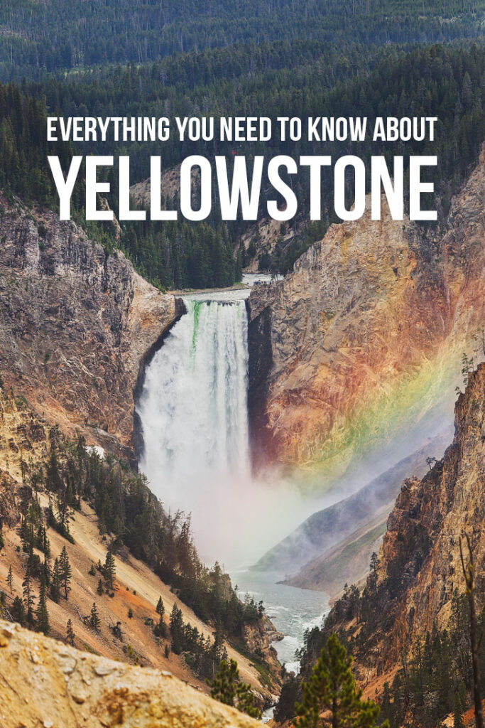 The Best of Yellowstone National Park - Your essential guide to attractions, day hikes, where to spot wildlife, and more // Local Adventurer