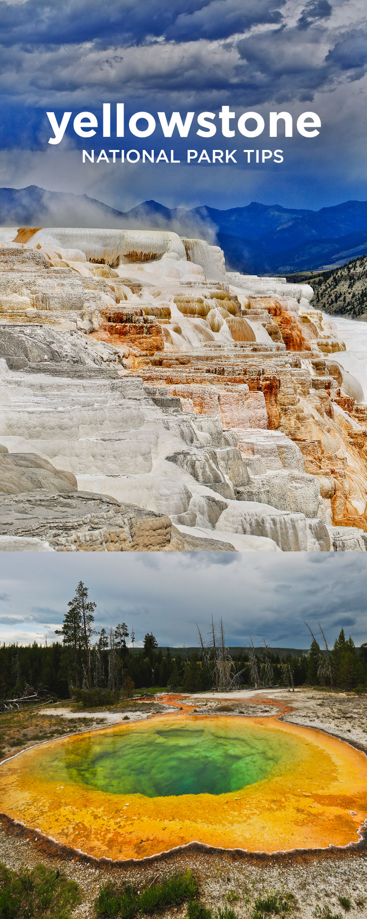 The Best Way to See Yellowstone + Where to Spot Wildlife + Best Day Hikes + More // Local Adventurer