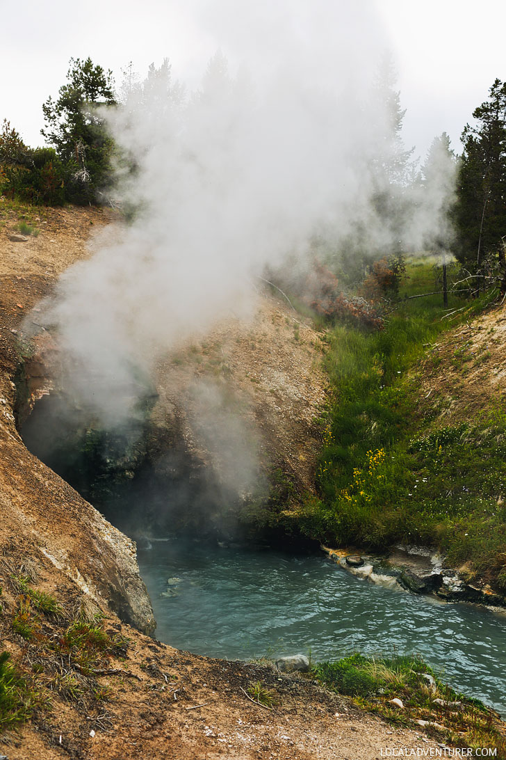 Dragon's Mouth Spring, Mud Volcano Area, Yellowstone National Park // Local Adventurer
