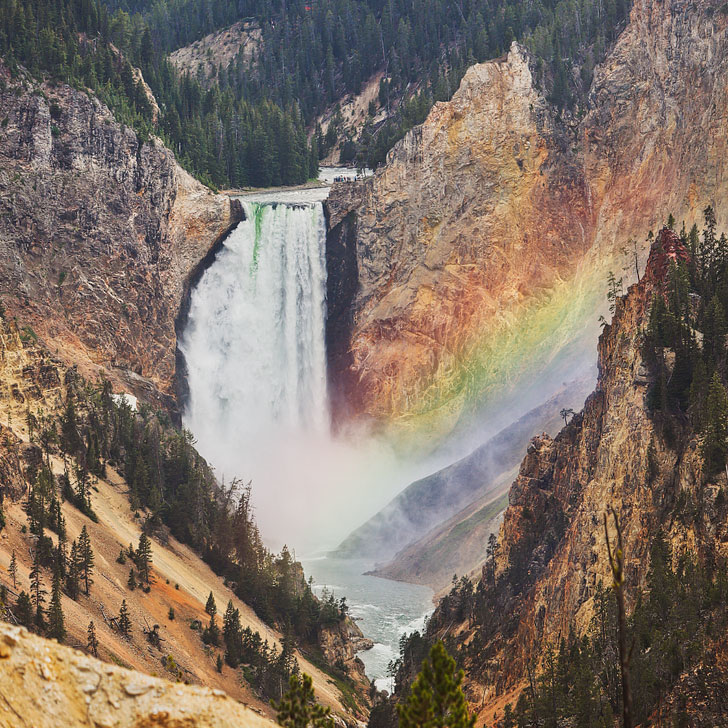Lower Falls, Yellowstone National Park - Best Yellowstone Attractions, Day Hikes, and More // Local Adventurer