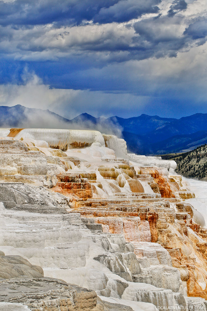 Mammoth Hot Springs at Yellowstone National Park + Tips for Your Visit // Local Adventurer