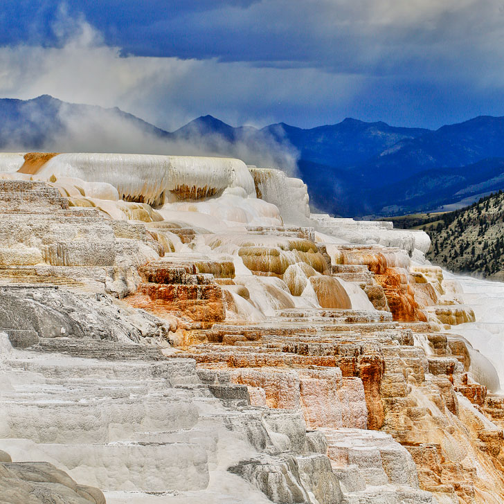 Mammoth Springs at Yellowstone National Park + Tips for Your Visit // Local Adventurer
