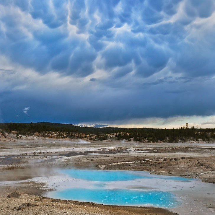 Norris Geyser Basin + Your Ultimate Guide on What to Do in Yellowstone National Park // Local Adventurer