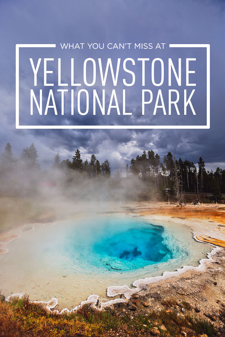 Best Places to Visit in Yellowstone - Tips on the Top Attractions, Where to See Wildlife, Best Day Hikes, and More // Local Adventurer