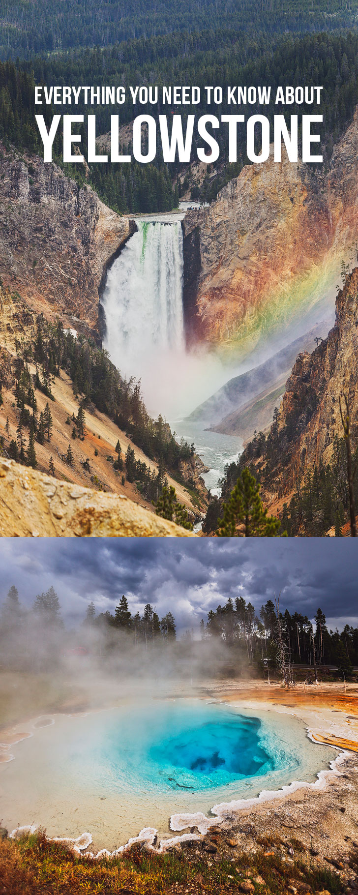 Your Ultimate Guide to Yellowstone + Top Yellowstone Attractions You Can't Miss + Best Day Hikes + Where to Eat and Stay // Local Adventurer