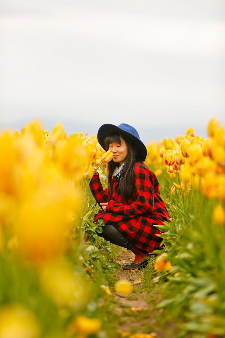 The Most Beautiful Tulip Fields in Oregon to Put on Your Bucket List + More Tulip Festivals in the US You Must Visit // Local Adventurer