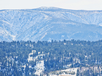 Heading to Big Bear? Click through to 15 best things to do in Big Bear in both the winter and summer. This Big Bear Lake guide includes how to spend the perfect weekend there • Boulder Bay Park • Big Bear Alpine Zoo • Castle Rock trail • Seasonal events • Tips for First Timers // Local Adventurer #bigbear #visitcalifornia #localadventurer #bigbearlake #california