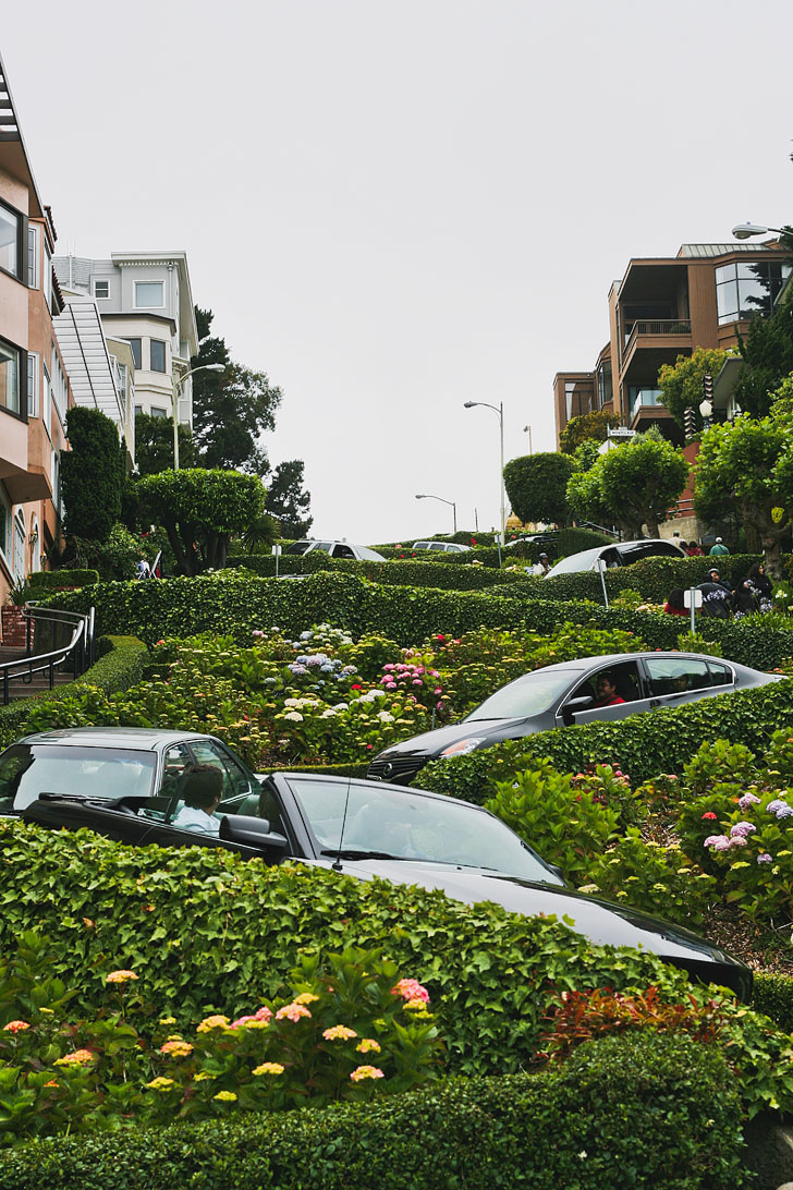 Drive Lombard Street - the crookedest street in the world + 25 Free Things to Do in San Francisco // Local Adventurer #sanfrancisco #sf #bayarea