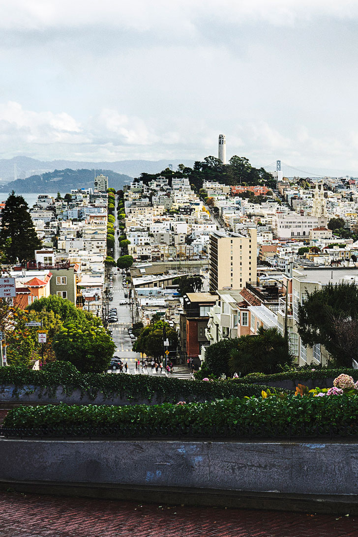 Drive Lombard Street - claimed to be the crookedest street in the world + 25 Free Things to Do in San Francisco // Local Adventurer #sanfrancisco #sf #bayarea