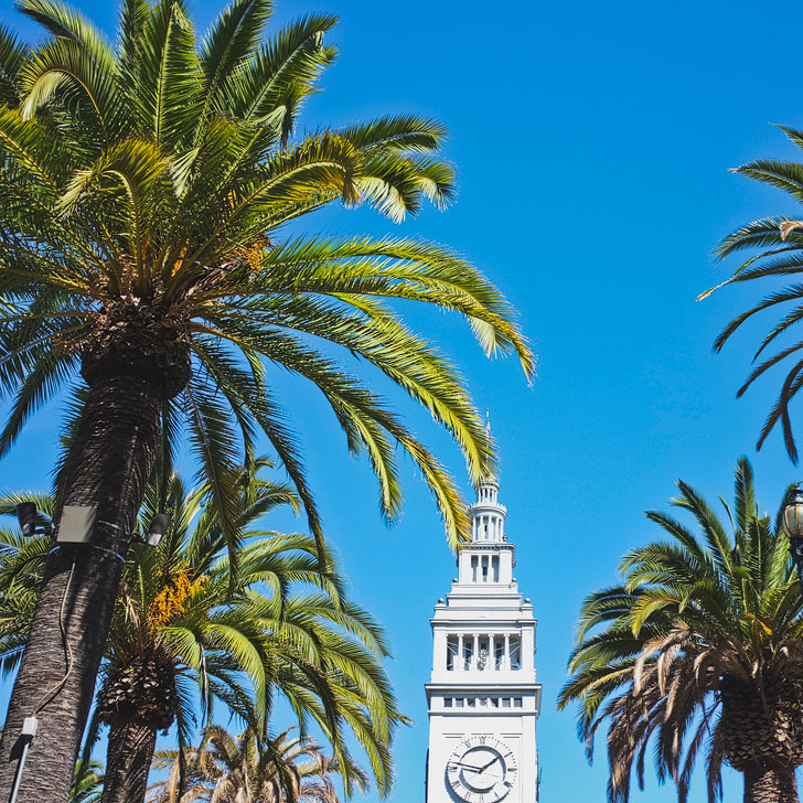 Farmer's Market at the Ferry Building + 25 Free Things to Do in San Francisco // Local Adventurer #budgettravel #sf #sanfrancisco