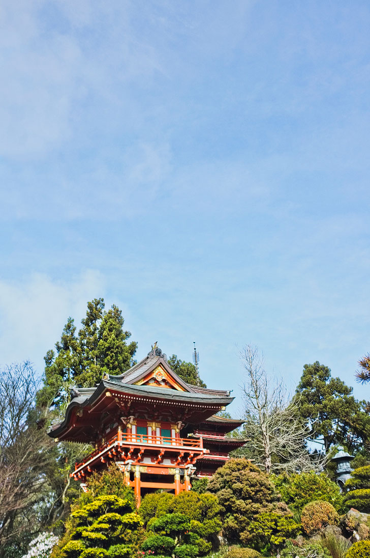Japanese Tea Garden Golden Gate Park + 25 Free Things to Do in San Francisco // Local Adventurer #sf #bayarea #sanfrancisco
