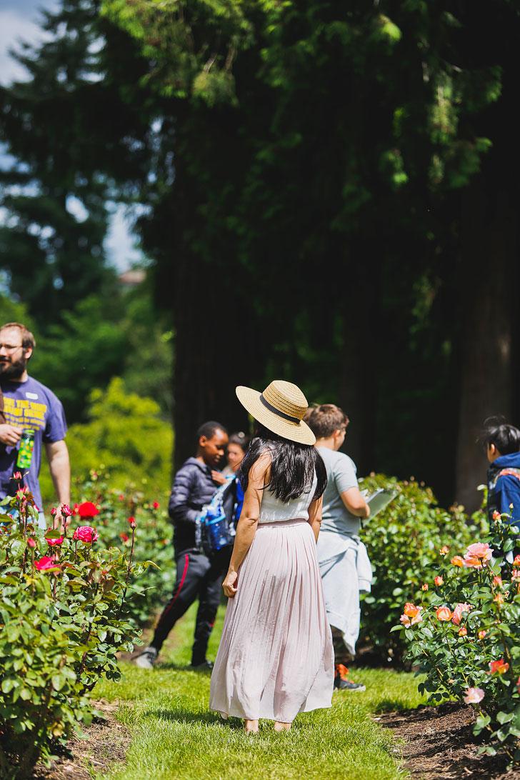 For your Portland Oregon Travel Summer Bucket Lists - International Rose Garden // Local Adventurer #portland #oregon