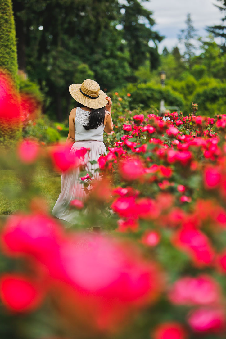The Largest Rose Garden in Portland Oregon - Click through to find out more info // Local Adventurer #portland #oregon