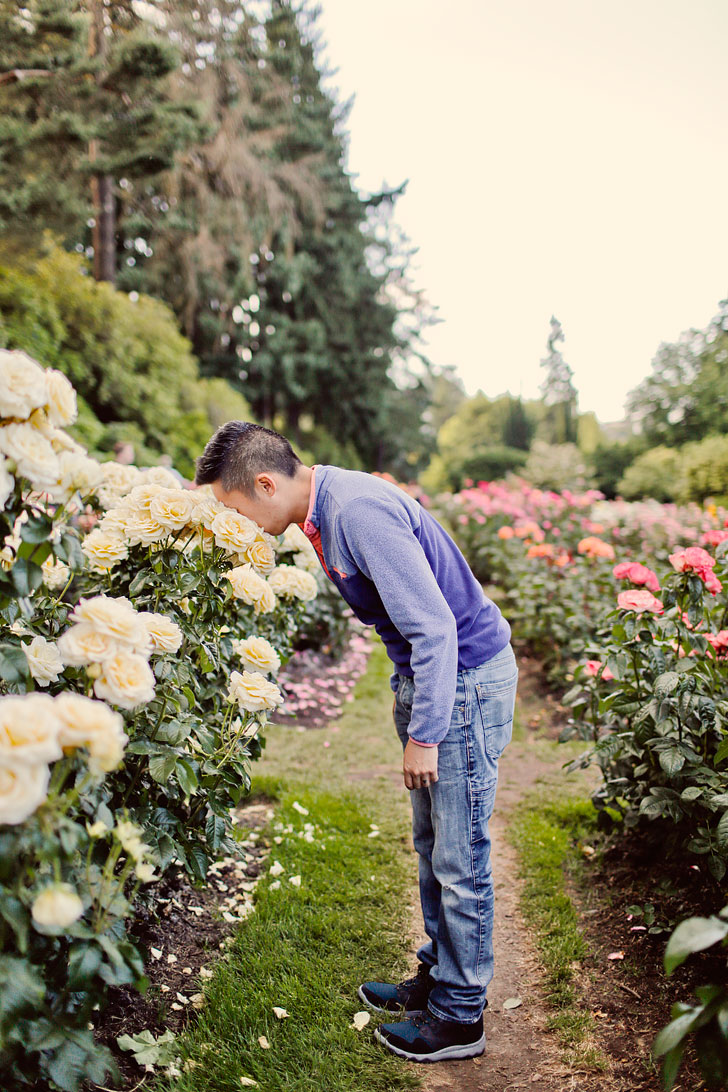 International Rose Test Garden Portland Oregon // Local Adventurer #portland #pdx
