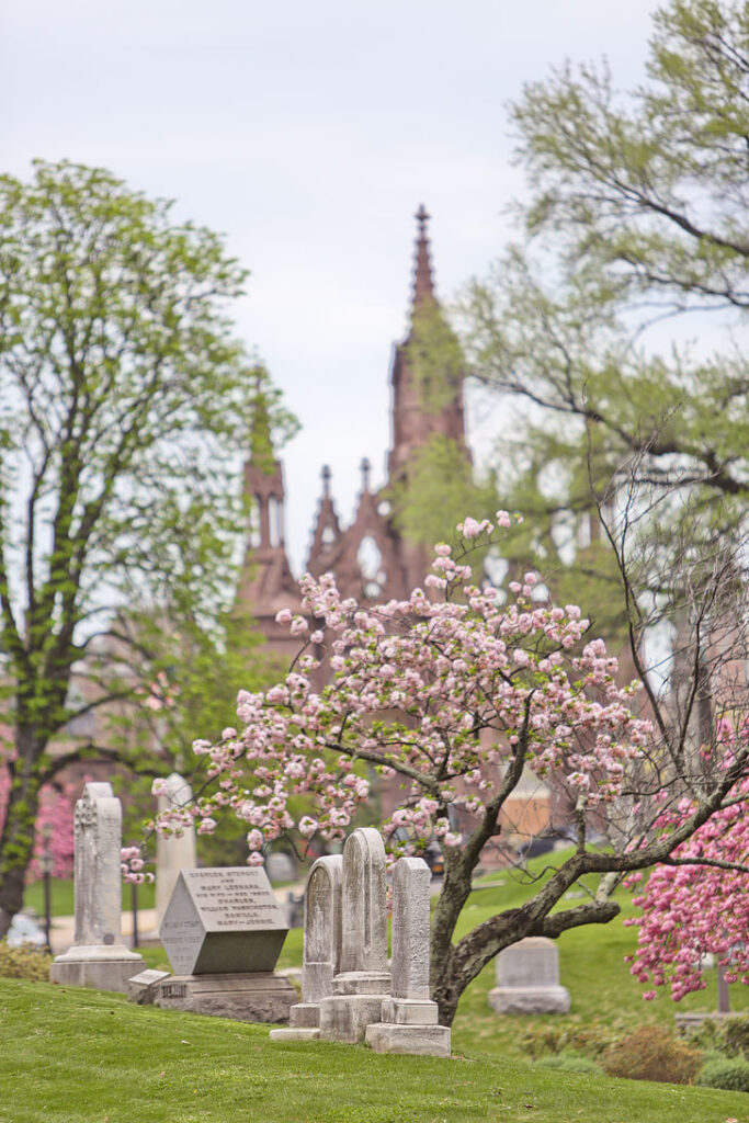 Greenwood Cemetery in Brooklyn is a wonderful spot to see Cherry Blossoms of all varieties // Local Adventurer #brooklyn #nyc