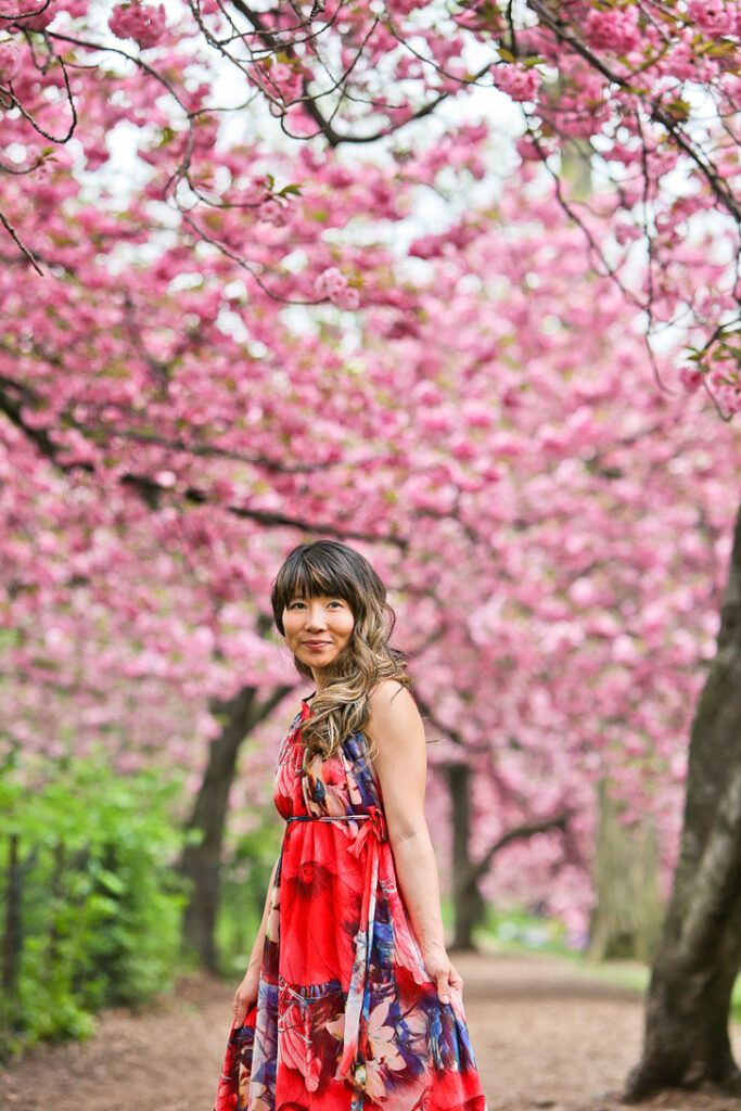 Cherry Blossom NYC Central Park || Your Ultimate Guide to Finding Cherry Blossoms in New York City // Local Adventurer #newyorkcity #nyc
