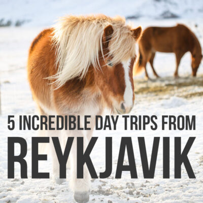 5 Epic Day Trips from Reykjavik Iceland You Can't Miss   Best Places to Drive to in Iceland - Are you traveling to Iceland? Click the article to see the beautiful destinations that are only a day trip away from Reykjavik. Why you should visit them, Iceland road trip travel tips, and what to do in Reykjavik // Local Adventurer #reykjavik #roadtrip #iceland