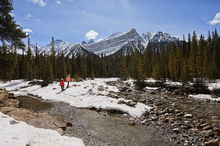 Rockies Heli Canada Snowshoeing in Jasper National Park Alberta // Local Adventurer #alberta #canadianrockies #canada