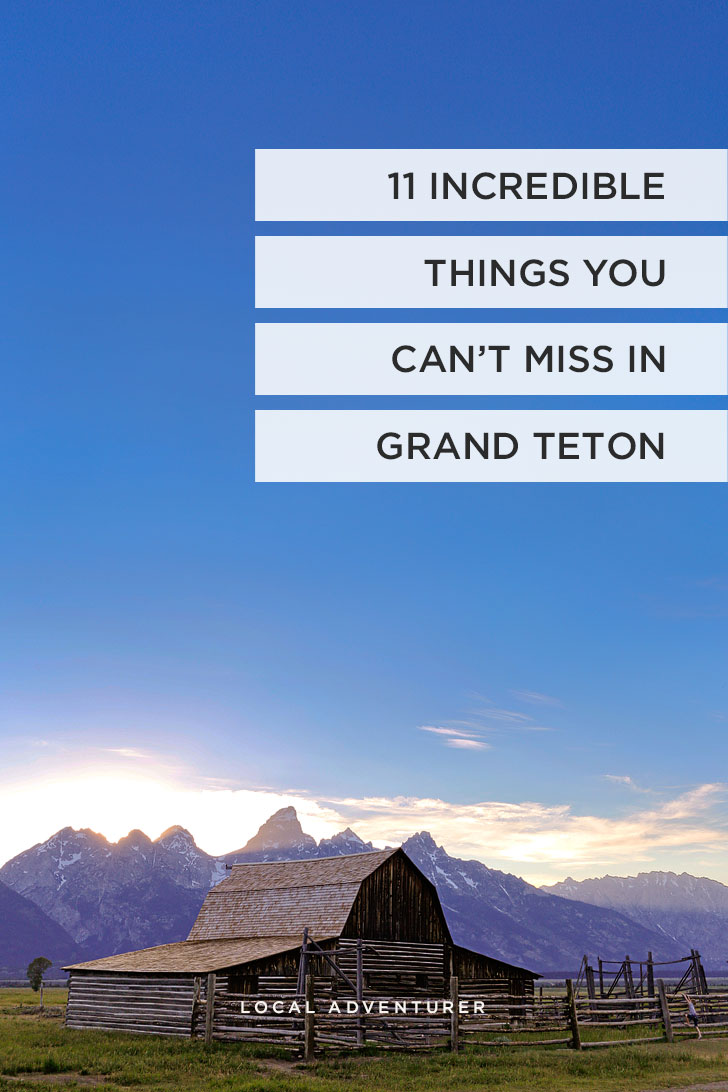 Grand Teton National Park Photography, Adventure, & Landscapes | If you're headed to Grand Teton National Park then you need to check out this article. Find out the best things to do, where to find wildlife, and a hiking bucket list. It truly is one of the most beautiful places in the United States // Local Adventurer #grandteton #wyoming #nationalpark