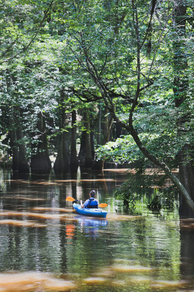 7 Unique Things to Do in Congaree National Park in Columbia South Carolina