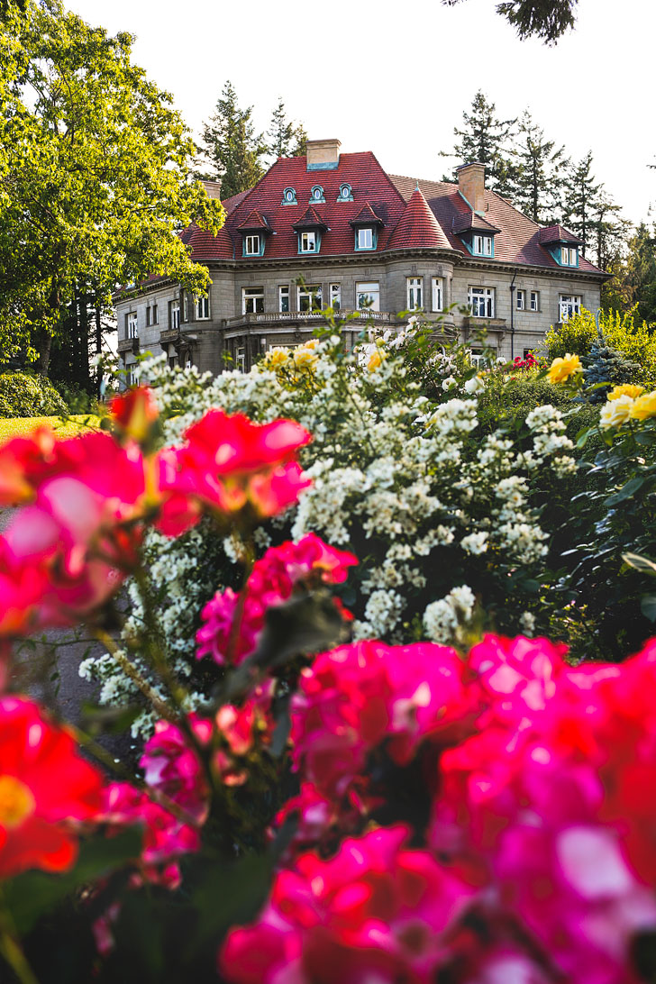Are you visiting Portland in the summer? Portland Oregon is commonly called the City of Roses or Rose City. Check out this article to see the best places to find the roses • Best rose gardens in Portland • Best season and time to visit • Photo of Pittock Mansion Rose Garden // Local Adventurer #pdx #portland #pnw #oregon #roses