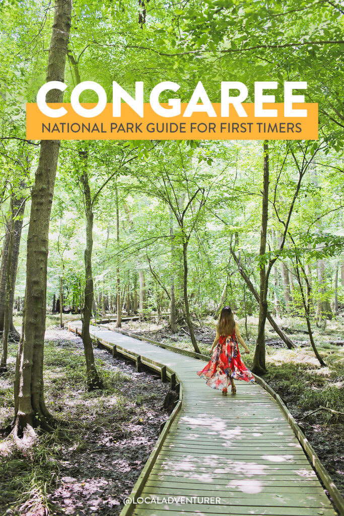 Congaree National Park Guide