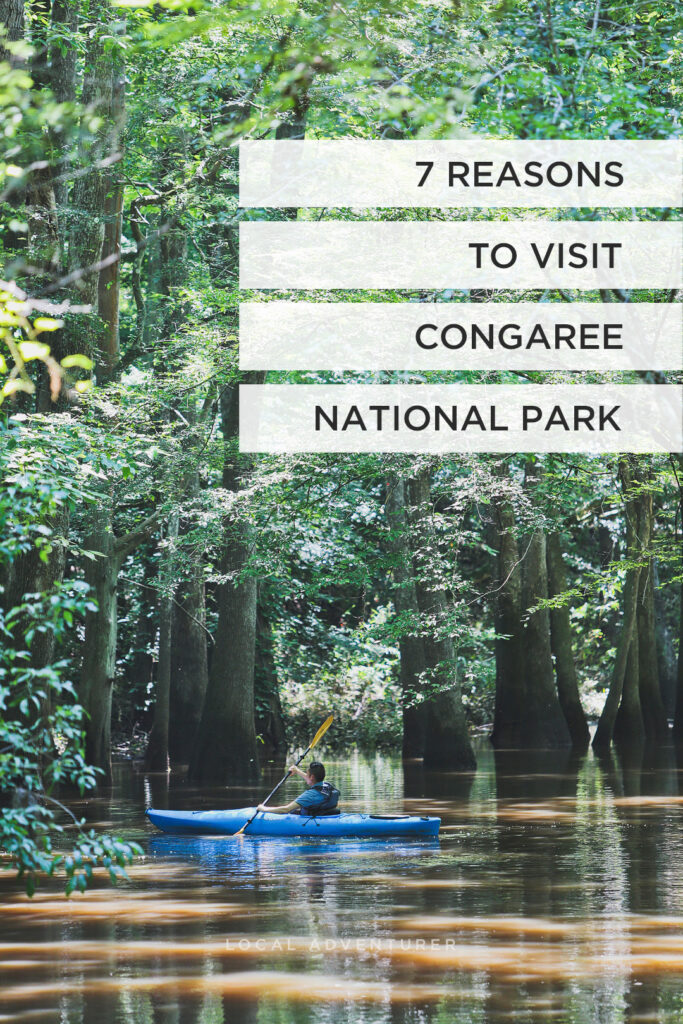 Kayaking in Congaree National Park South Carolina