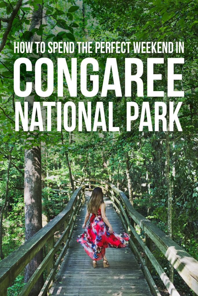 Best things to do in Columbia SC - Congaree National Park