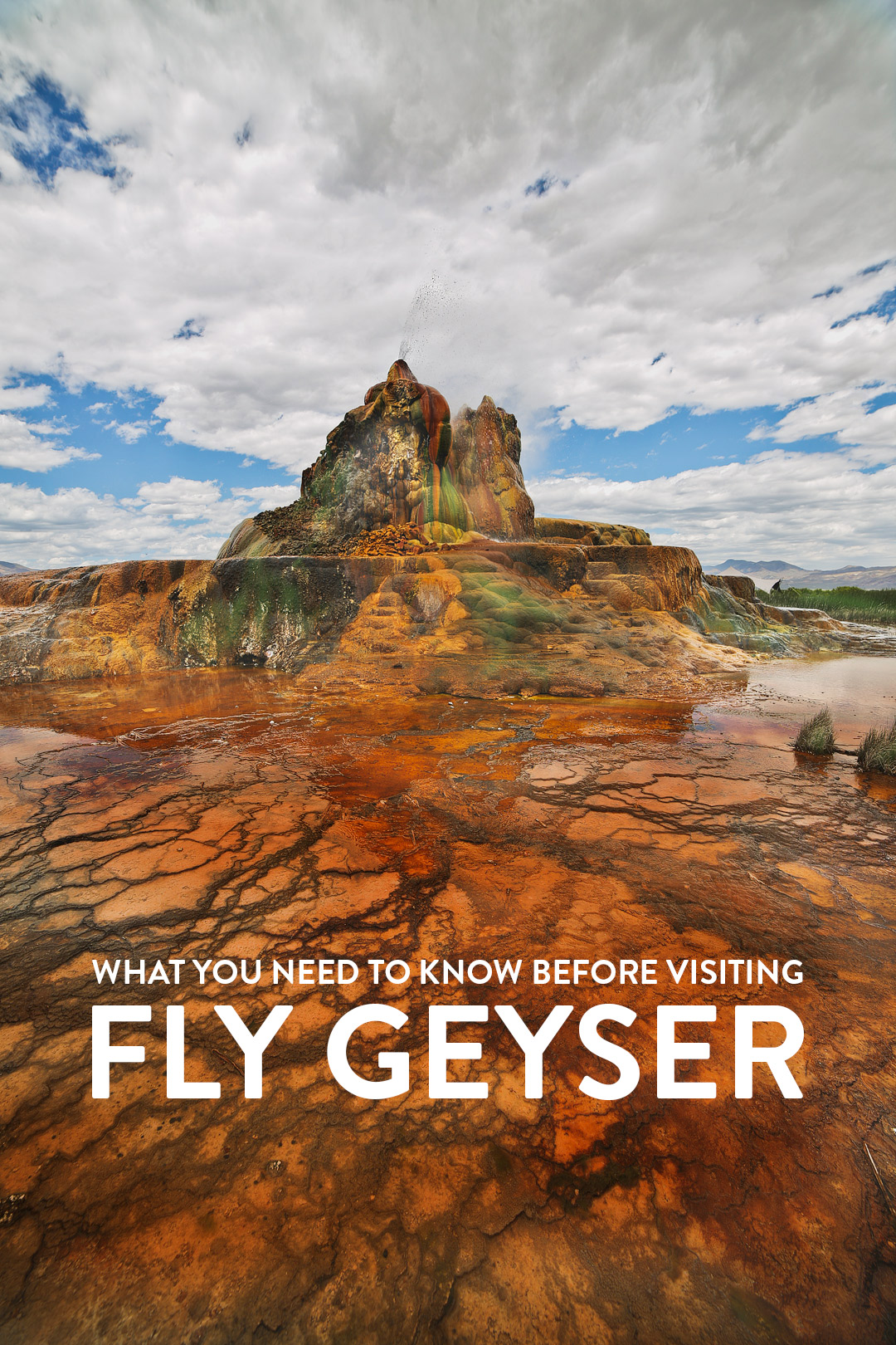 Want to visit the Fly Geyser, Nevada's natural wonder? Save this pin and click through to find out how to book a rare tour of this beautiful phenomenon. Up until recently, no one was allowed to visit the fly ranch geyser property, but now that Burning Man owns it, you can go on nature walk tours to learn more the beautiful black rock desert, fly geyser tour, art installations, and the hot springs. // Local Adventurer #travelnevada #dfmi #nevada #flygeyser #blackrockdesert #desert