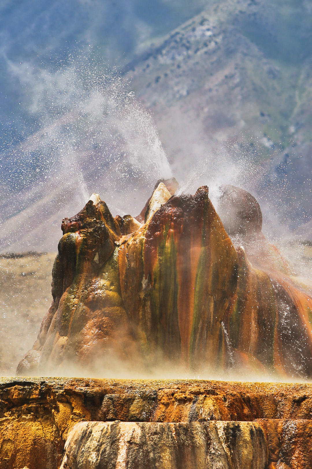 Heading to the fly geyser in the black rock desert in Nevada? Save this pin and click through to see the ultimate guide to the Fly Geyser. Find out the best time to visit, what to pack, how to book a the fly geyser tour, and photography tips. It's a spectacular natural wonder that you should absolutely visit. // Local Adventurer #localadventurer #travelnevada #dfmi #nevada #flygeyser #blackrockdesert #desert