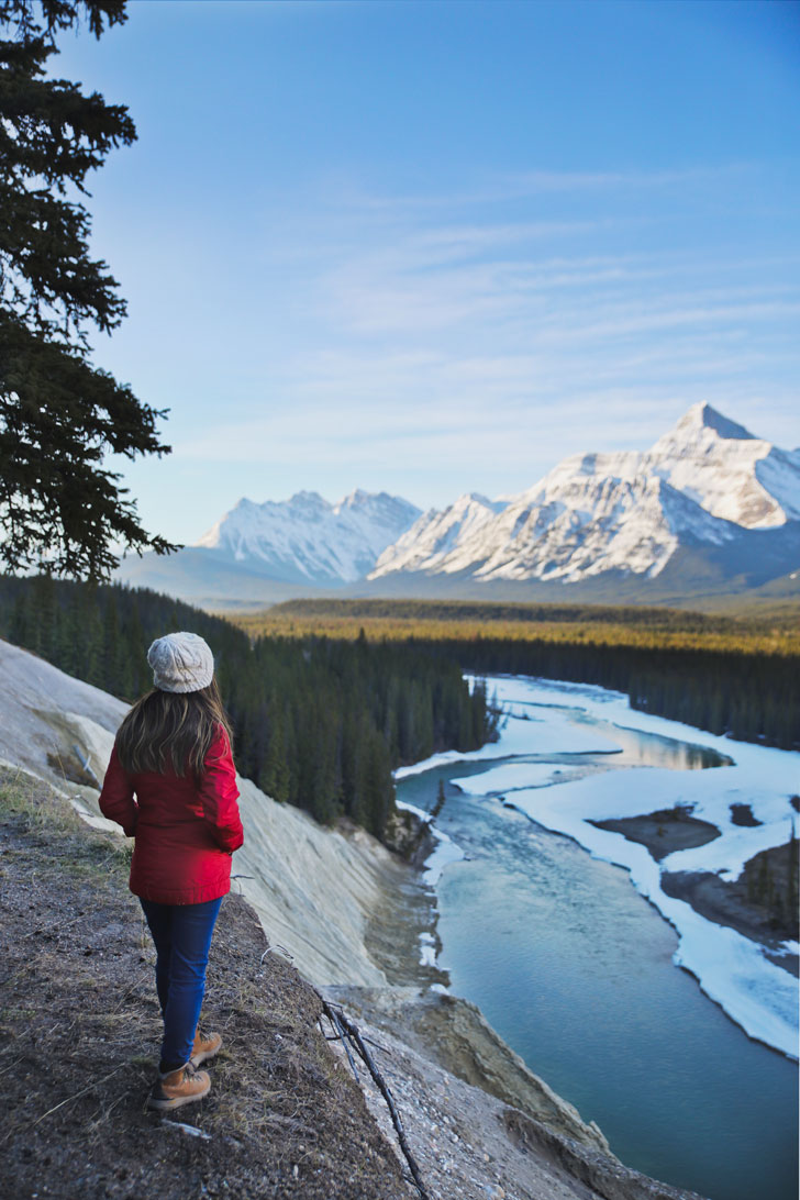 Goats and Glaciers + 15 Best Things to do in Jasper Canada | Don't start planning your trip to Jasper National Park before checking out this article. Find out the best time to travel to the park, what hikes you should add to your bucket list, and the best activities to do while you're there. Make the most of your visit to the beautiful Canadian Rockies // Local Adventurer #jasper #alberta #canada