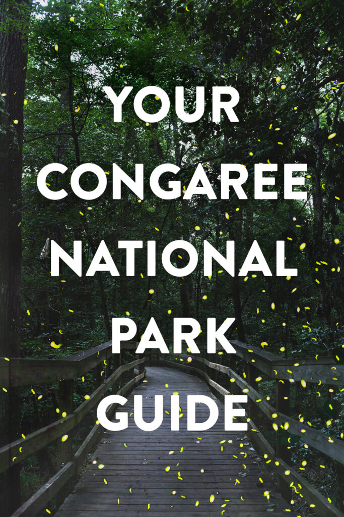 7 best things to do in Congaree National Park South Carolina