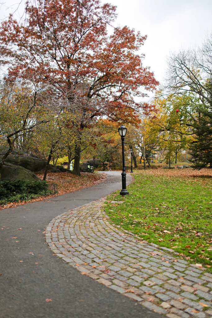 Central Park Autumn Places + 17 Best Places to See Fall Foliage in the US and Best Fall Colors in USA // Local Adventurer #autumn #fall #foliage #trees #leaves #colors #centralpark #usa #travel #nyc #newyork #newyorkcity
