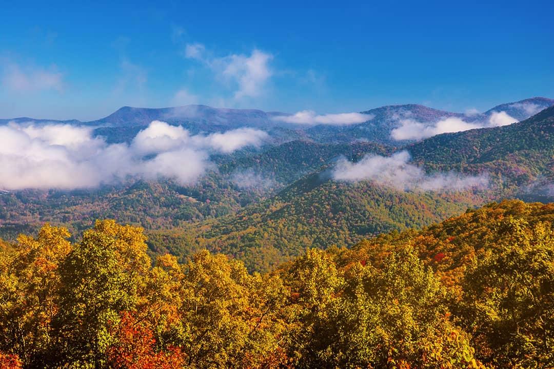 clayton georgia fall foliage in usa