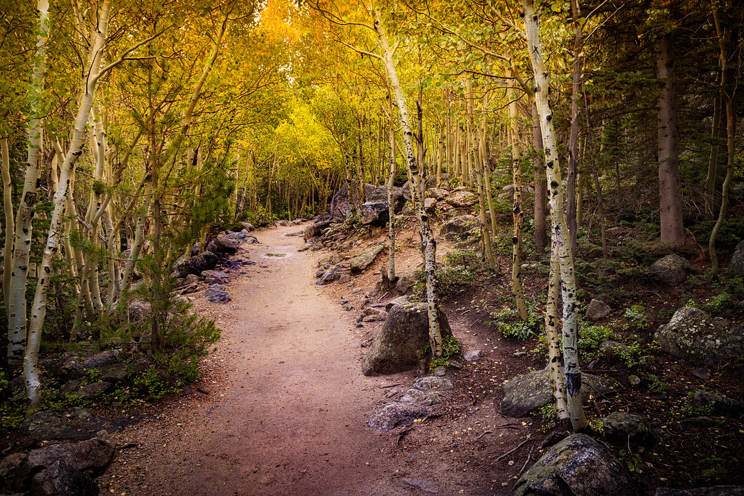 Colorado Fall Colors + 17 Best Places to See Fall Foliage in the US // Local Adventurer #usa #travel #fall #foliage #autumn #leaves #trees #colorado #co #hiking