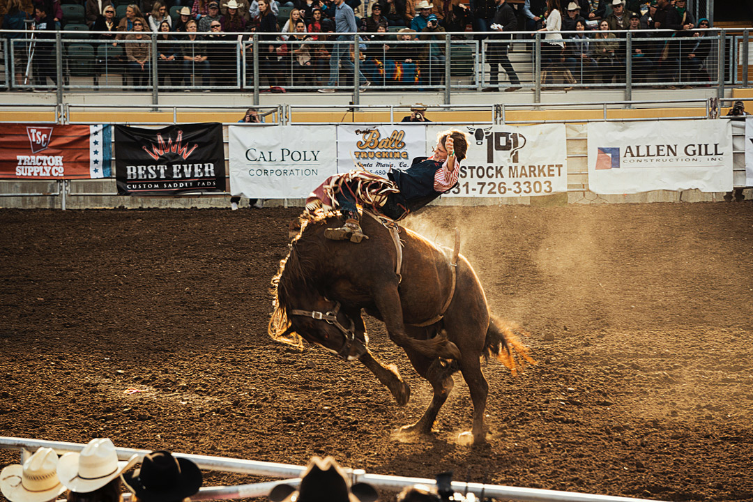 Jackson Hole Rodeo + Top Things to Do in Jackson Hole in Summer and Winter // Local Adventurer